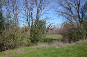 17300 Evergreen Rd, Cottonwood, CA 96022