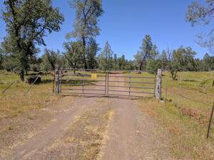 Merrilea Way, Millvile, CA 96062