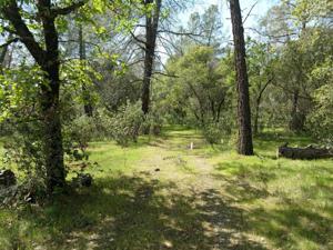 Hidden Ln, Palo Cedro, CA 96073