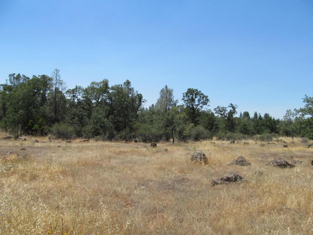 Lack Creek Rd, Shingletown, CA 96088