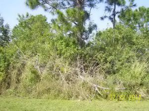 183 Sw Thornhill Drive, Port Saint Lucie, FL 34953