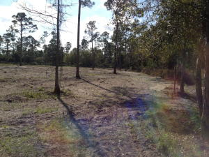 4255 160th N Avenue, Loxahatchee Groves, FL 33470
