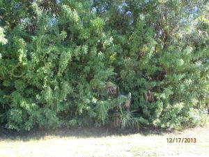 4912 Myrtle Drive, Fort Pierce, FL 34982