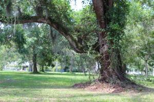 720 Parkway Drive, Fort Pierce, FL 34950