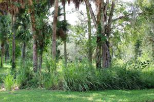 0 Wilderness Drive, Fort Pierce, FL 34982