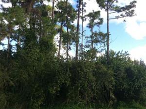 1301 Sw Melrose Avenue, Port Saint Lucie, FL 34953