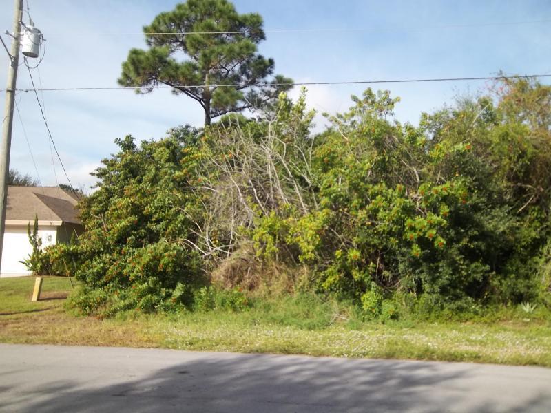 2542 Se Hemsing Street, Port Saint Lucie, FL 34953