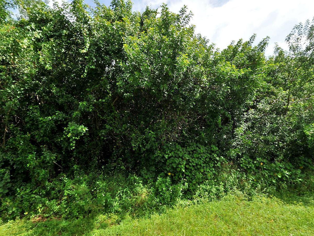 531 Sw Nadell Court, Port Saint Lucie, FL 34953