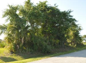 1372 Sw Vicuna Lane, Port Saint Lucie, FL 34953