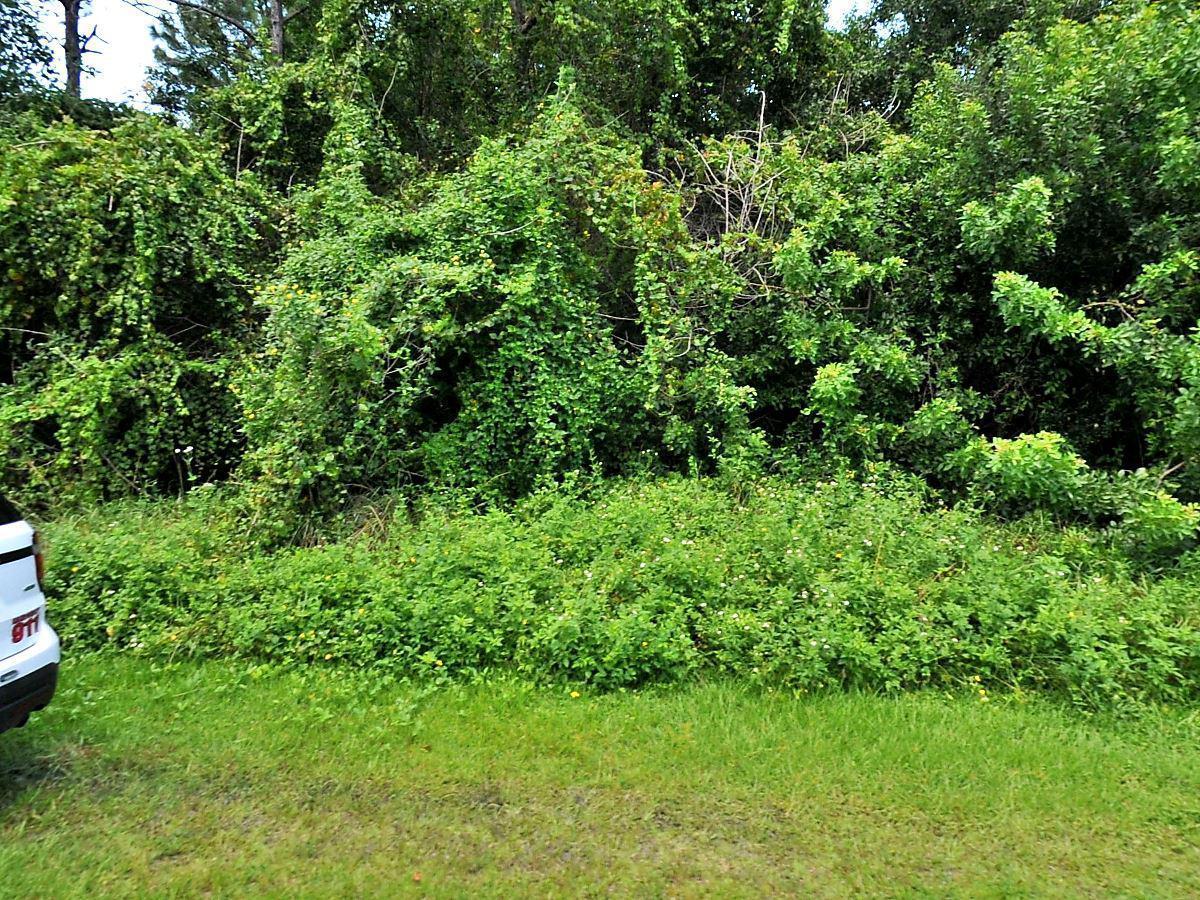 513 Se Felix Avenue, Port Saint Lucie, FL 34984