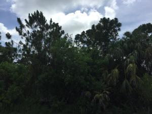 4082 Sw Kallen Street, Port Saint Lucie, FL 34953