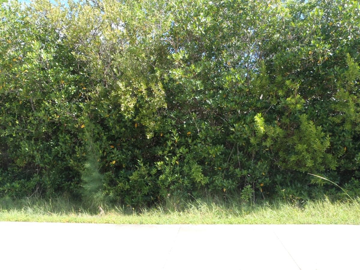 Xxx S Ocean Drive, Fort Pierce, FL 34949