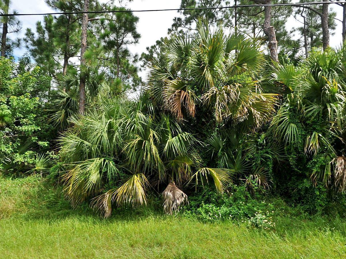 833 Sw Abingdon Avenue, Port Saint Lucie, FL 34953