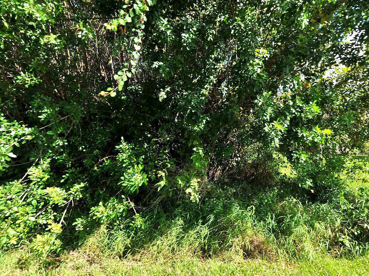 1617 Sw Hextel Avenue, Port Saint Lucie, FL 34953