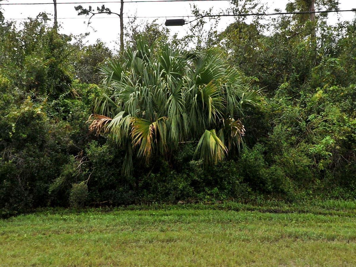 1358 Sw California Boulevard, Port Saint Lucie, FL 34953