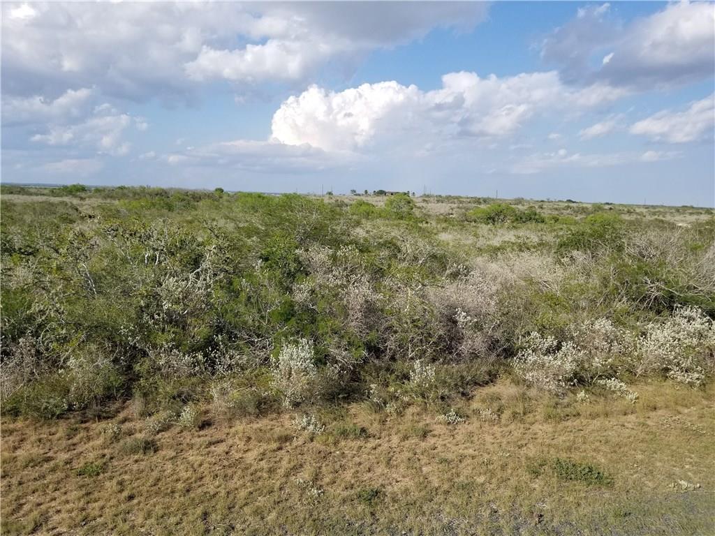 0 Valley View, Sandia, TX 78383
