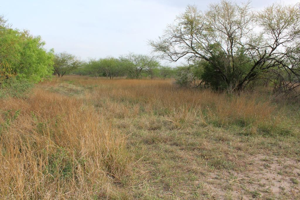 00 County Rd 147, George West, TX 78022