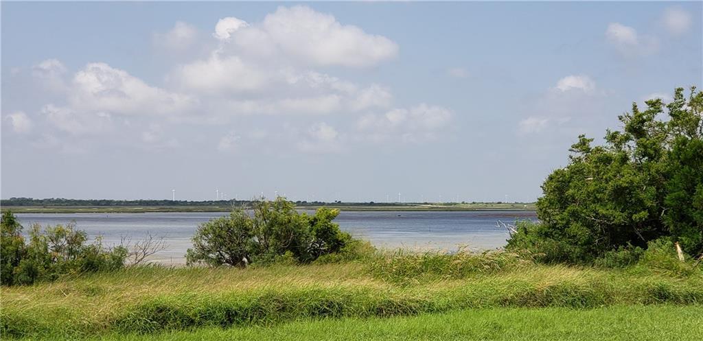 451 Egery Island, Taft, TX 78390