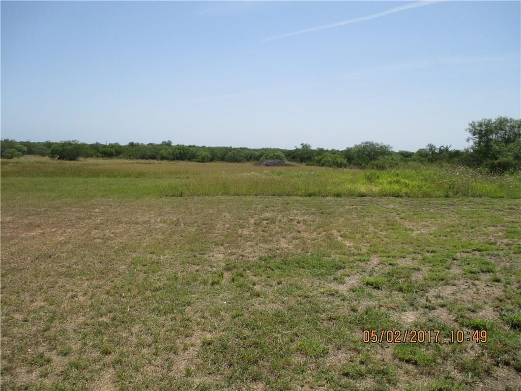1147 County Road 111- 10 Acres, Alice, TX 78332