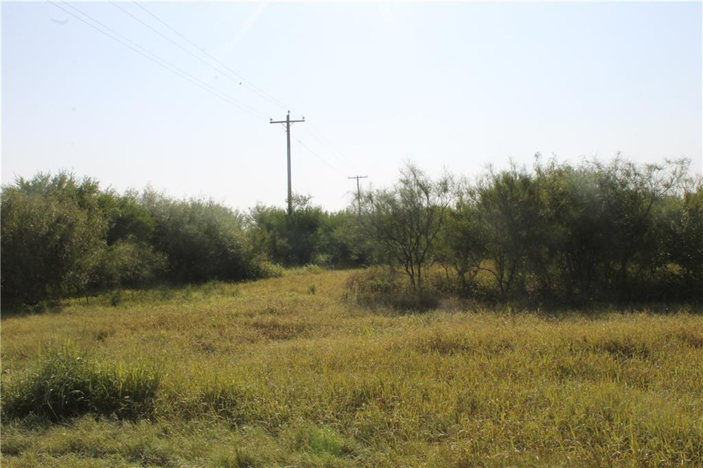 0 County Road 87, Robstown, TX 78380