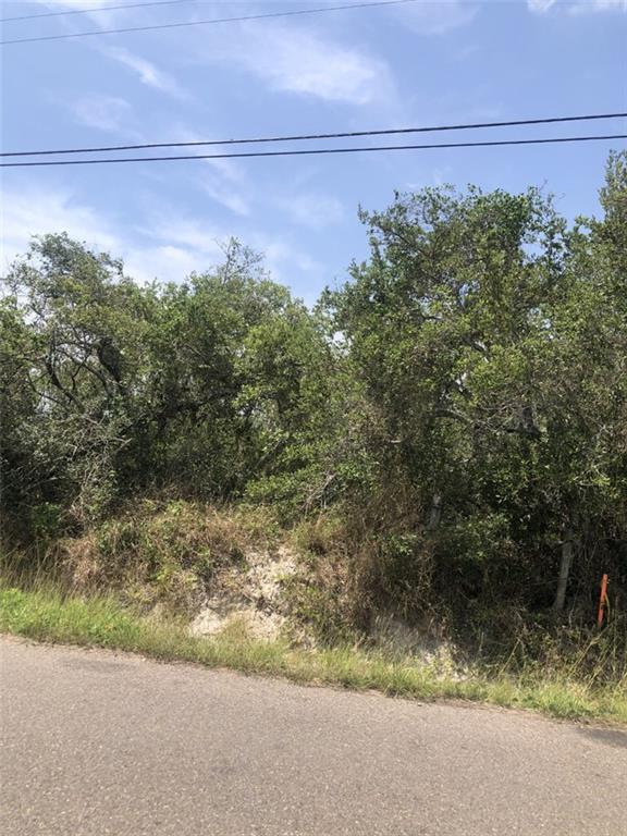 Lt39&40 Highland Ave, Aransas Pass, TX 78336