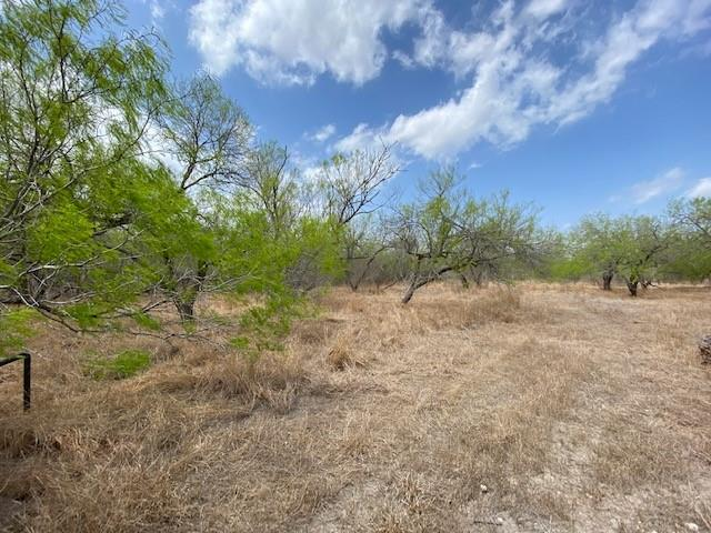 0 Private Road 2006, Kingsville, TX 78363
