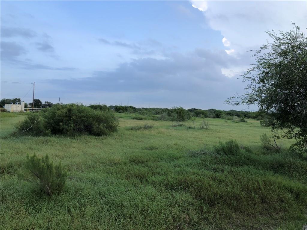 1296 County Rd, Sinton, TX 78387