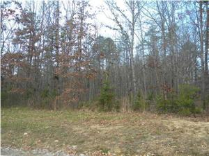 0 Clear Brooks Dr 13, Signal Mountain, TN 37377