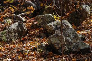 0 White Pine Ln, Rising Fawn, GA 30738