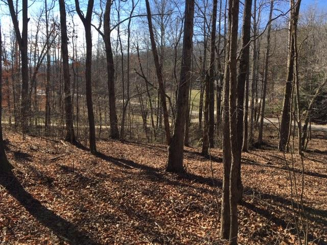 Lot 9 Van Davis Rd 9, Georgetown, TN 37336