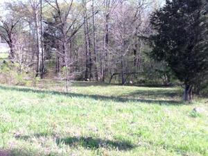 0 Lakewood Dr, Sale Creek, TN 37373