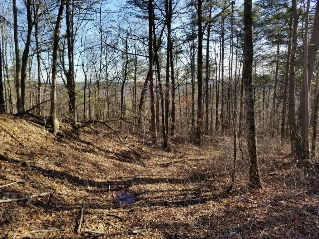 74.03 Palmer Firetower Road Tract H, Palmer, TN 37365