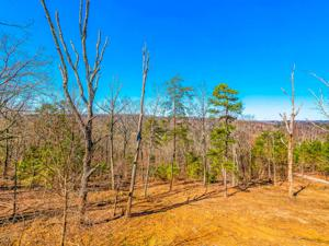 7126 White Oak Valley Rd, Mcdonald, TN 37353