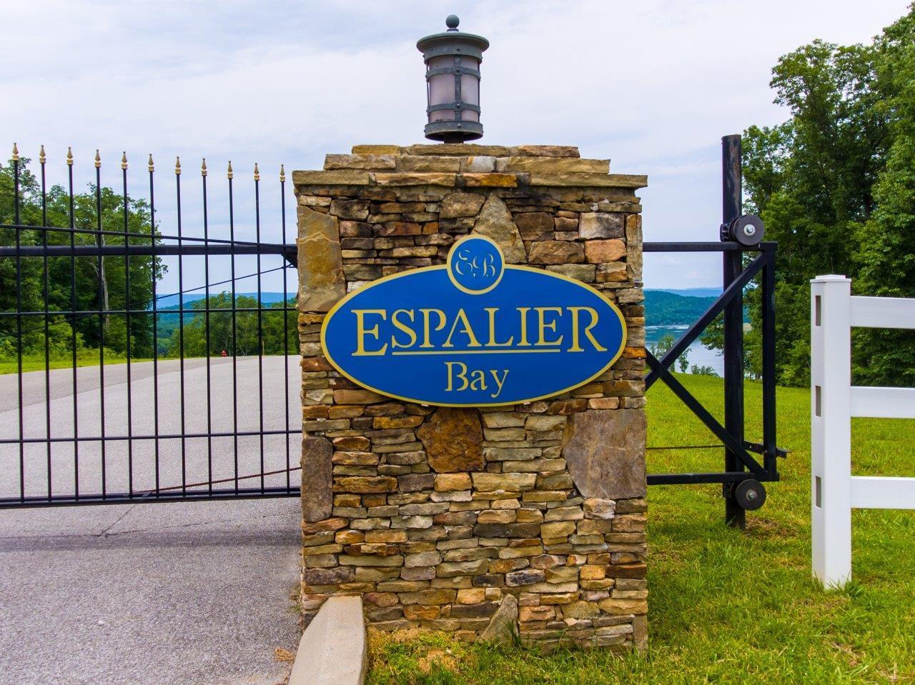 49 Espalier Dr Lot 49, Decatur, TN 37322