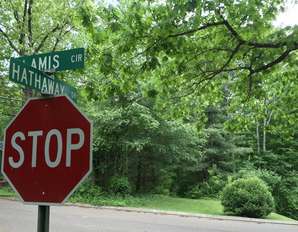 -- Glamis Cir, Signal Mountain, TN 37377