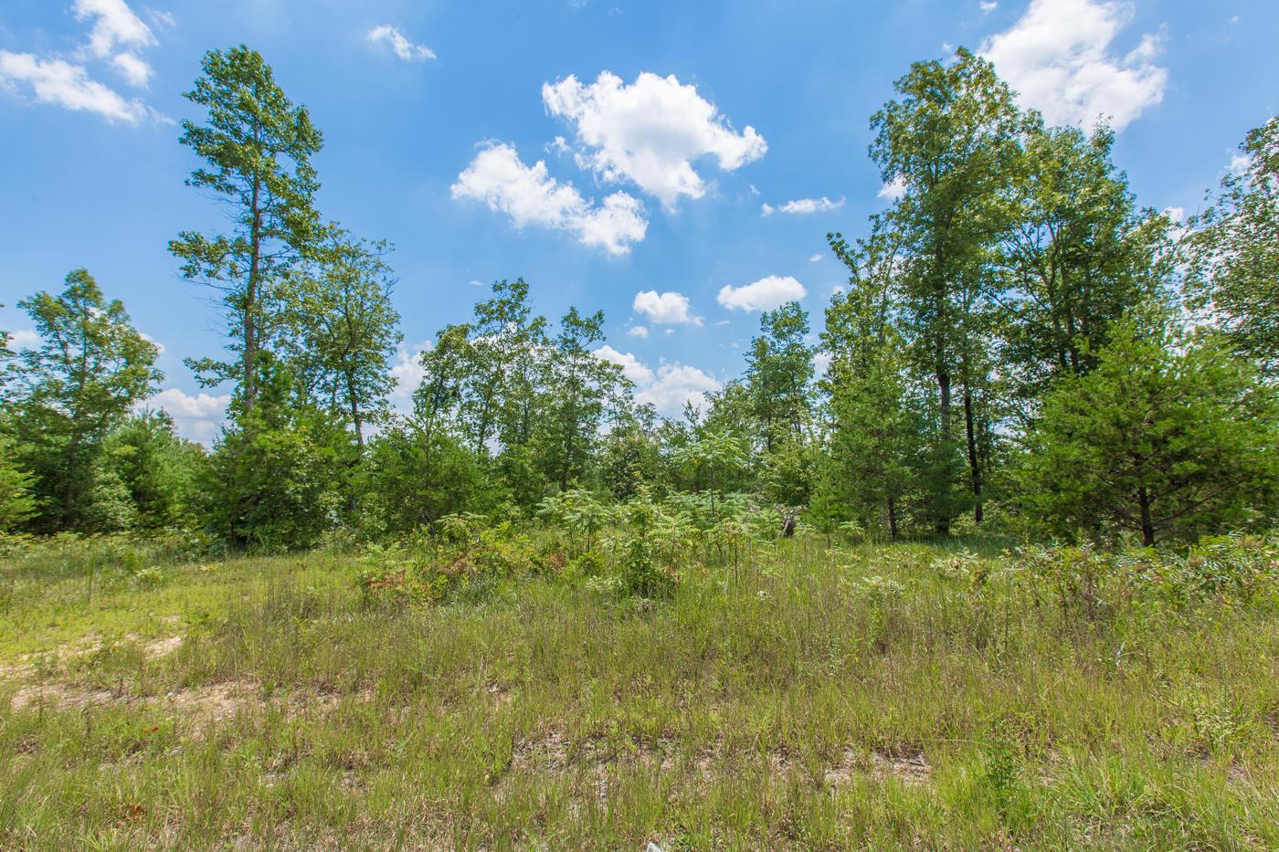 12 Clear Creek Dr, Signal Mountain, TN 37377