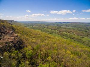 134 Stonesthrow Ln, Lookout Mountain, GA 30750