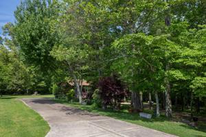 1277 County Road 89, Bryant, AL 35958