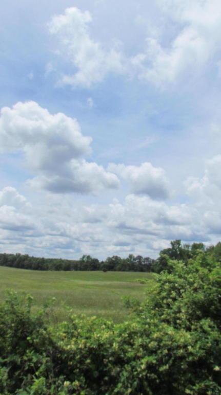 00 Hwy 157 & Flarity Road, Cloudland, GA 30731