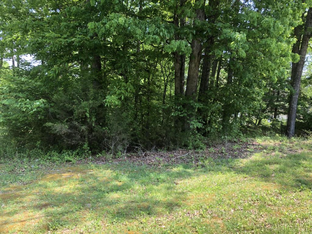 O Lakeview Dr 170, Spring City, TN 37381