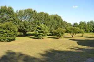 2350 Ketner Mill Rd, Whitwell, TN 37397