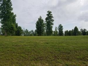 Lot 158 Raulston Falls Road 158, Jasper, TN 37347