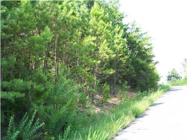 Lot 3 Pinnacle Point Dirve 3, South Pittsburg, TN 37380
