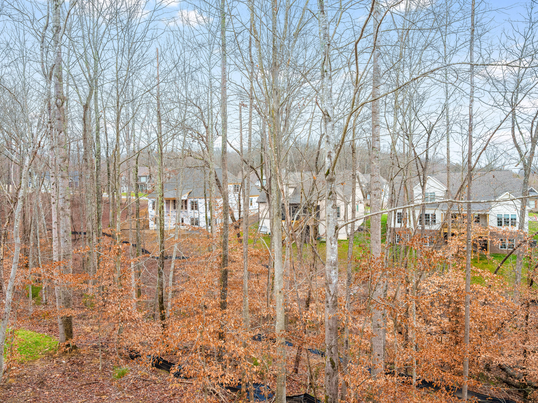3742 Lacy Leaf Ln, Apison, TN 37302