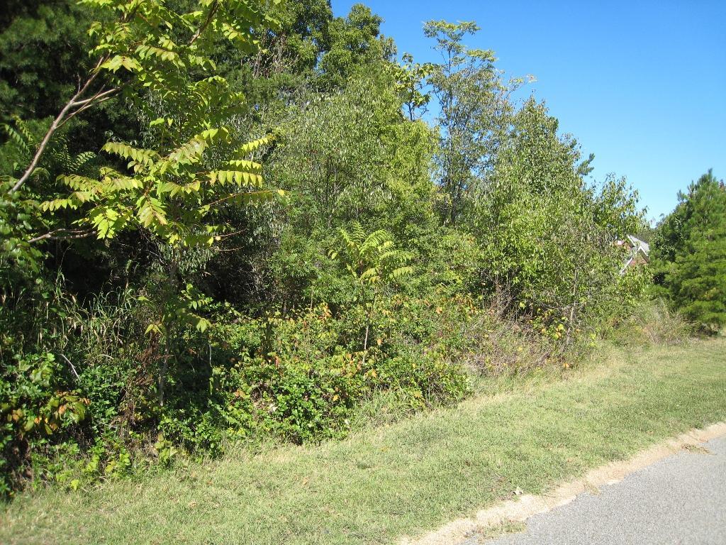 4715 Lake Forest Dr, Hixson, TN 37343