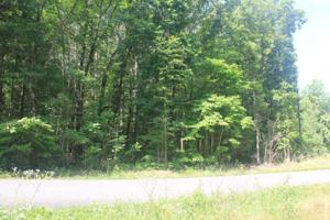0 Nw Dean Dr Lot 32, Georgetown, TN 37336
