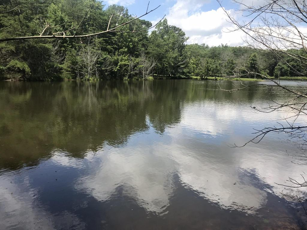 0 Frog Lake Rd 17, Rising Fawn, GA 30738