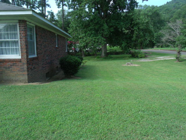 705 4th St, South Pittsburg, TN 37380