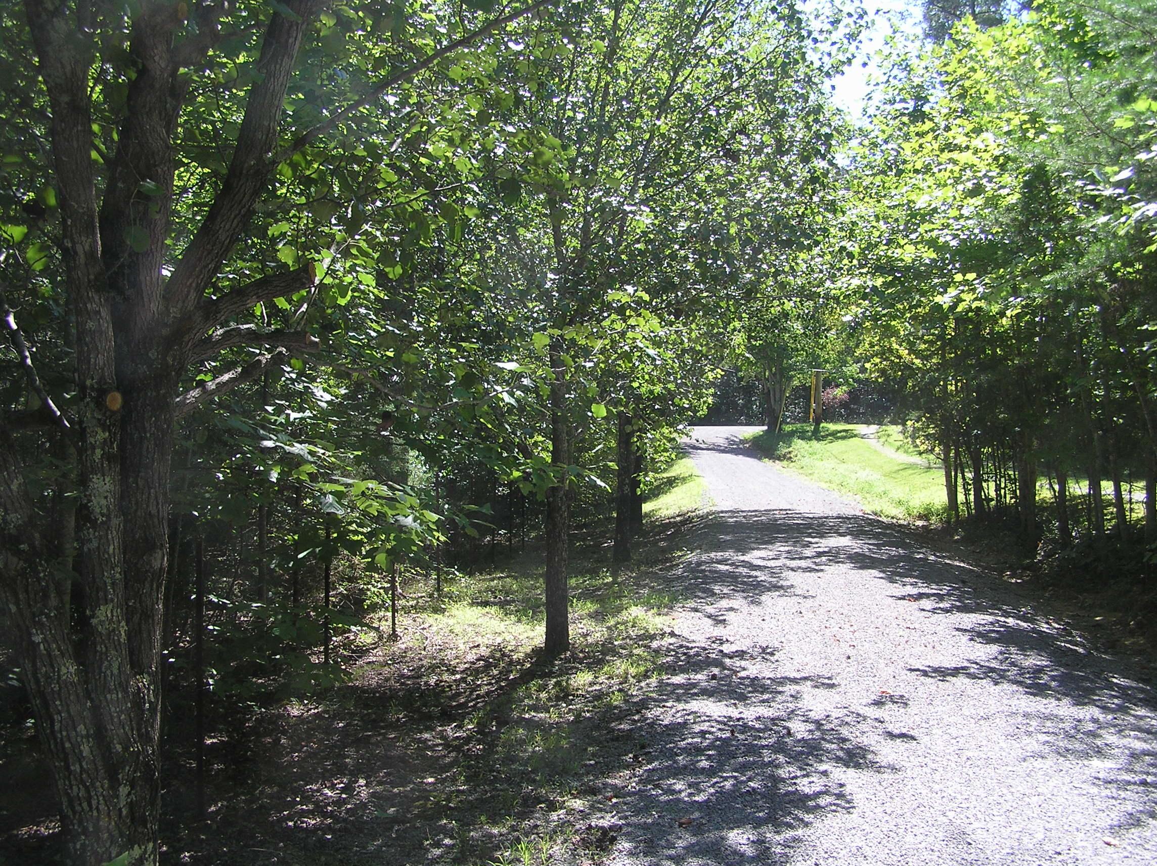 133 Snowbird Lane, Dunlap, TN 37327