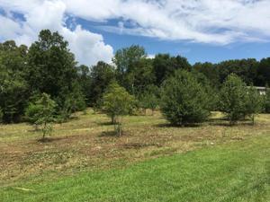 0 Dolly Pond Rd, Harrison, TN 37341